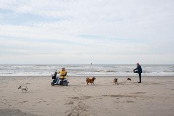Nederland, Hoek van Holland, 12-10-2013. Een vrouw rijd met haar scootmobiel en honden over het strand. Foto: Peter de Krom